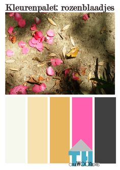 kleurenpalet rozenblaadjes