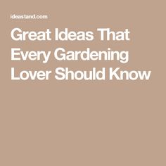 Great Ideas That Every Gardening Lover Should Know