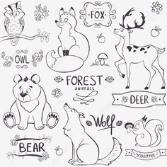 Illustration Set Of Cute Animals Of The Forest With Design Names Royalty Free Cliparts, Vectors, And Stock Illustration. Image 23207289.