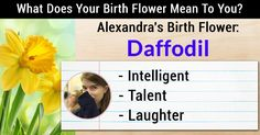 What Does Your Birth Flower Mean To You?Alexandra, your birth flower is Daffodil! This flower has a very special meaning in your life because it influences you as a person. The characteristics of your birth flower make you the wonderful person that you are!