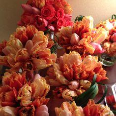 coral-guava-tulip-roses-wedding-elegance-simplicity-washington-dc-college-park-wedding.png (773×772)