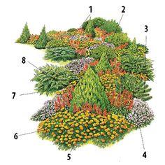 "1.  Borievka rozprestretá (Juniperus horizontalis""Glauca"") 2. Smrek biely (Picea glauca""Conica) 3. Borovica trpasličia (Pinus pumila""Clauca"") 4. Agerát mexický (Ageratum boustonianum) 5. Šalvia ohnivá (Salvia splendens) 6. Aksamietnica rozložitá (Tagetes patula) 7. Tuja východná (Thuja orientalis""Aurea Nana"") 8. Borievka čínska (Juniperus chinensis""Pfitzeriana Glauca"")"