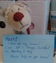 Cuddly toy Teddy (Lamb?) Found 06/05/2014 at Greggs, North Street, Guildford. Left behind in the shop today ( Tues 6 May). This squeaky sheep (lion?) is feeling a bit lost but we'll make sure he has some sausage rolls and yum yums to eat. Contact: Alison on https://whiteboomerang.com/lostteddy/?show=2esxlp6 #lostteddybear #lamb