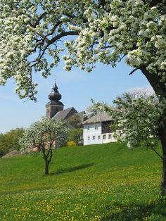 Veit - Toberstetten - Neuhofen an der Ybbs - Lower Austria Vienna Woods, Visit Austria, Heart Of Europe, Central Europe, Salzburg, Countries Of The World, Capital City, Alps, Places To Go