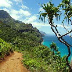 Pensando em por o pé na estrada? Napali Coast - Havaí.  #hawaii #verao #summertime #diversao #ferias #curtaavida #explore #aventura #esporte #radical #indomitum #indomitumshop #manifestyourIdentity #camisetas #tshirt #babylook #vestuario #roupa www.indomitumshop.com.br