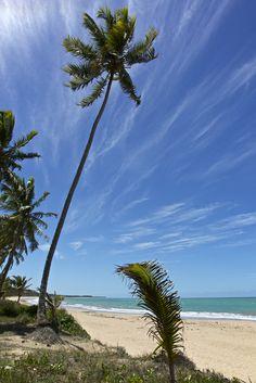 Praia da Sereia - Maceió, Alagoas | by Francisco Aragão
