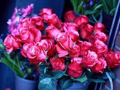 Você faz a Diferença: Um caminho de flores...