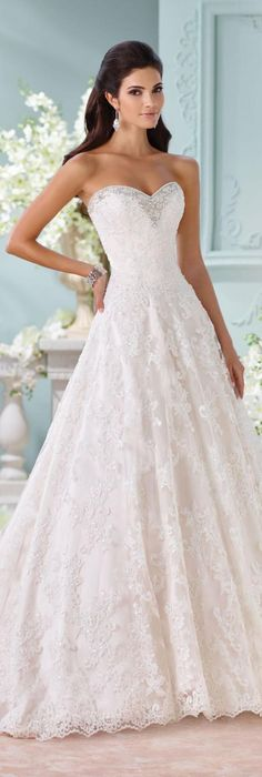 The David Tutera for Mon Cheri Spring 2016 Wedding Gown Collection - Style No. 116211 Clytie