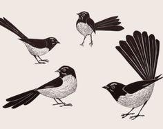 Image result for paintings of willi wagtails Art Auction Projects, Bird Sketch, Bird Crafts, Australian Animals, Art N Craft, Backyard Birds, Pattern Drawing, Art Of Living, Bird Art