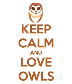 I already love owls... a lot!!!!