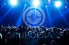 Activaciones de marca Btl Bogota Digital Marketing, Concert, Mice, Theme Parties, Computer Mouse, Concerts