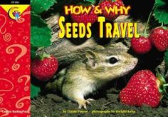 How and Why Seeds Travel by Elaine Pascoe.  Amazing photos!  *****great 1st-2nd grade book.