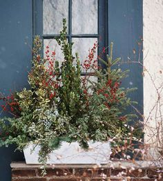 Window-Box Style - Insert tall elements, such as spruce tops and boxwood branches, into gravel. Use shorter branches to fill in around the rim of the box. Then add pops of color throughout the display with red berry branches