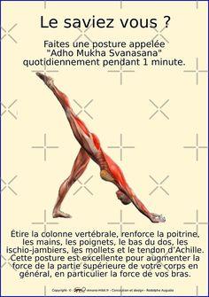 Bikram Yoga, Iyengar Yoga, Ashtanga Yoga, Fitness Del Yoga, Yoga Muscles, Mudras, Yoga Positions, Pilates Workout, Positive Attitude
