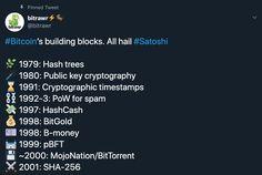 bitcoin politika