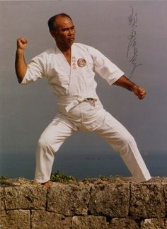 Taika in Okinawa Oyata Okinawan Karate, Martial Arts, Combat Sport, Martial Art
