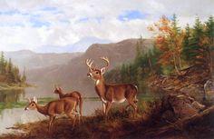 Arthur Fitzwilliam Tait (1819-1905) —  Adirondacks: October, 1882 (1280×832)