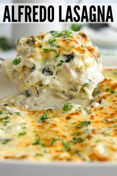 Chicken Alfredo Lasagna Rich, creamy, and delicious Chicken Alfredo Lasagna recipe that is made with a homemade alfredo sauce that is loaded with parmesan. This chicken lasagna is easy to prepare and can be made ahead of time and served for any occasion. Homemade Chicken Alfredo, Chicken Alfredo Lasagna, Chicken Lasagna Recipes, Chicken Lasagne, Cheese Lasagna, Chicken Alfredo Recipe With Spinach, Chicken Cottage Cheese Recipe, Baked Alfredo Chicken, White Lasagna With Chicken
