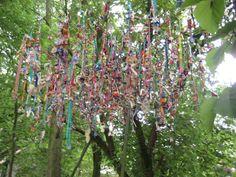 De tutjesboom in de tuin van Kina (Gent) Wind Chimes, Outdoor Decor, Flowers, Plants, Home Decor, Decoration Home, Room Decor, Plant, Royal Icing Flowers