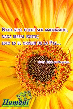 Lo Real...