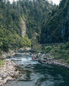Gorge. #NZMustDo [📍Karangahake Gorge, The Coromandel. ��� New Zealand, Paradise, River, Nature, Outdoor, Instagram, Maori, Outdoors, Naturaleza