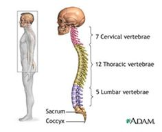 Back pain? Spine problem? A Minimally Invasive Spine Surgery Consultation in Los Angeles can help you.