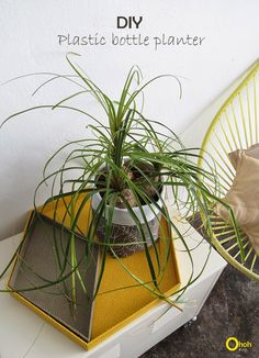 Ohoh Blog : Make a planter with a plastic bottle - diy self watering plant pot