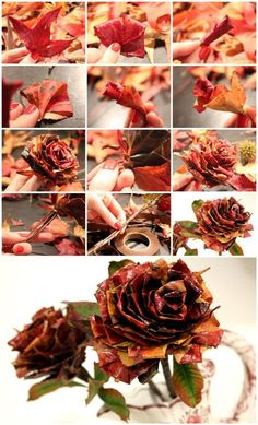 Rose with Leaves