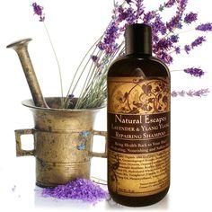 Lavender & Ylang Ylang Repairing Shampoo LARGER 16OZ SIZE!