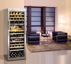 Liebherr Freestanding or Semi built-In Wine Storage Unit - WS 17800 Best Wine Coolers, Teal Sofa, White Canopy, Wine Fridge, Healthy Meals For Two, Wine Storage, Home Decor Styles, Glass Door, Shoe Rack