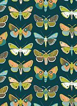 Mariposa in Blue by Blend Fabrics