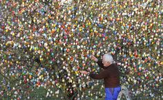 EASTER ORNAMENTS: Volker Kraft decorated a tree with 10,000 Easter eggs in his garden in Saalfeld, Germany, Wednesday. The Kraft family has been decorating their tree for Easter for more than 40 years. (Jens Meyer/Associated Press)