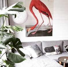 Meet the Flamingo #IXXI of our 'Natural History Museum' Imagebank. For more inspiration, have al ook at our Blog: http://www.ixxidesign.com/blog  #IXXI #ixxidesign #design #wallart #inspiration #home #livingroom #flamingo #art #colorfulhome #interior #style #interior