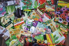 Ogrodnicza Obsesja: Ekologiczne alternatywy dla chemicznego zaprawiani...