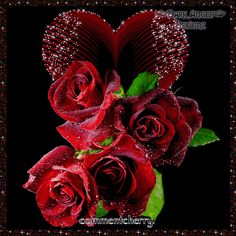 I Love Rose. I Love Fragrance hearts glitter roses Weekend Gif, Happy Weekend, Beautiful Roses, Beautiful Images, Beautiful Hearts, Flowers Gif, Corporate Flowers, Glitter Roses, Gif Photo
