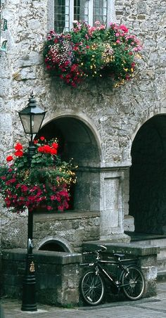 Rothe House.. Kilkenny city, Ireland. Europeans have some mad window box and flower basket skills...witnessed it myself!