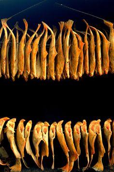 Fotografia przedstawiająca wędzone rybki. Świetny przykład fotografii produktowej