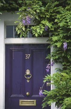 Lavish, fresh greenery climbing over a statement door, London by Veranda Entrance, Doors, House Painting, Statement Door, House Colors, Front Door Decor, Purple Front Doors, Colorful Interiors, House Front