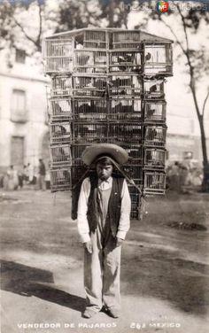 Fotos de , , México: Vendedor de pájaros