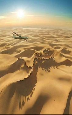 Flying Over a Camel Caravan, Sahara, Morocco