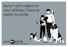 Sorry I can't make it to your birthday, I have to watch my turtle.