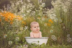 Kansas city baby and family photographer