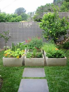Modern garden. Concrete raised planters. Thi would be good for a cold climate because concrete will hold the heat - not so good in a hot climate.