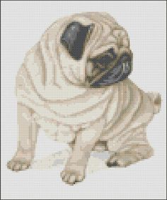 This pattern is of a fawn sitting Pug and uses 23 colours. The pattern size is100 x 120 stitches. Each chart is printed over four pages and the colours are shown both as colour blocks and symbols for ease of use. This chart is sold by download only. Once payment is received you will receive the pattern as an email attachment.