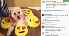 Infographics social media http://www.postplanner.com/how-to-use-emojis-on-instagram-in-comments/ 6 Ways to Tap Into the Power of Emojis on Instagram (follow these examples!)