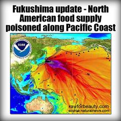 NO NUKES.  North American food supply poisoned along Pacific Coast.
