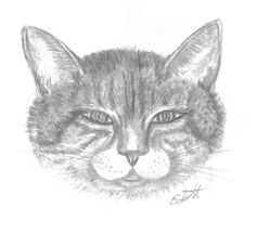 Cat Notecard Prints Set of 5 by ElaineAlexanderArts on Etsy, $6.50