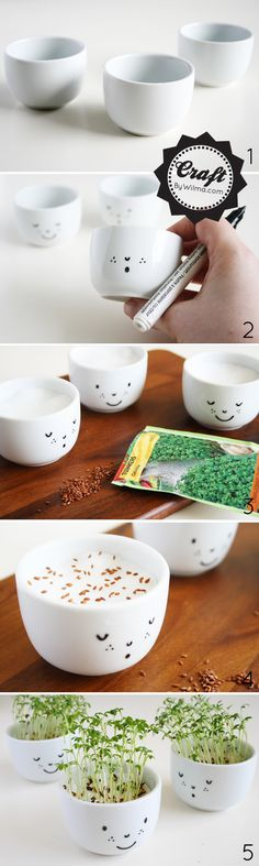 Aprenda a fazer mini vasos de agrião com carinhas para decorar sua cozinha e para ensinar seus filhos a plantar.