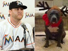 The pitbull ban in Miami-Dade County, FL forces Mark Buehrle's family to settle elsewhere.