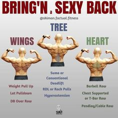 Back workout complete with 8 exercises gym workout chart and Gym Workout Chart, Gym Workout Tips, Weight Training Workouts, Workout Men, Workout Routines, Prison Workout, Dumbbell Workout, Workout Plans, Good Back Workouts